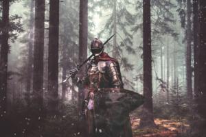 prayer warrior - knight in a forest