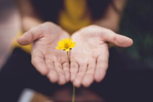 Bible verses about hope - hands with flower