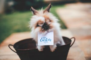 Easter Quotes- Easter bunny carrying a card which says Happy Easter