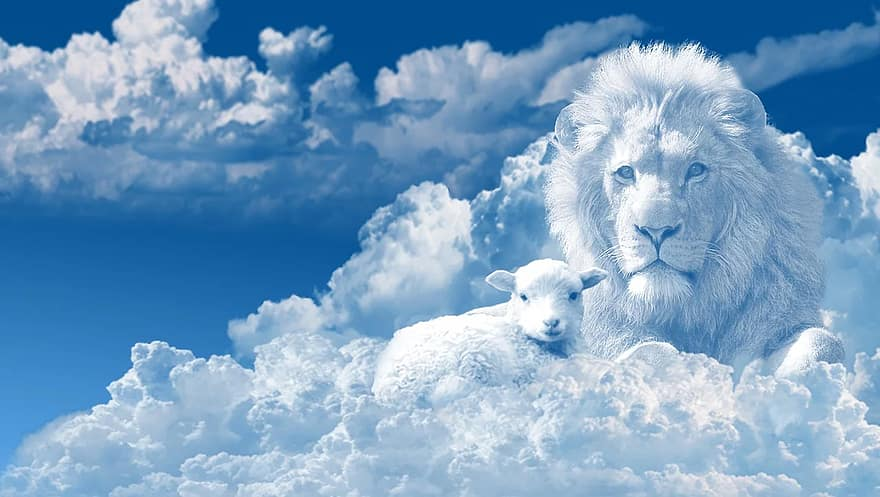 Lion and the lamb, clouds