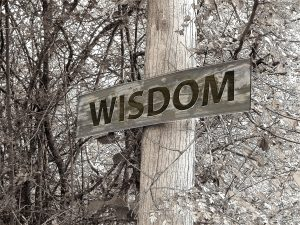 60 Greatest Bible Verses About Wisdom