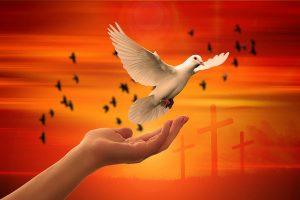 Dove, Holy Spirit