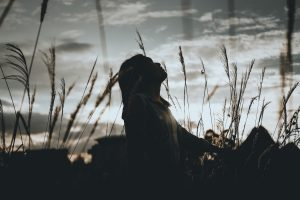 silhouette of a woman sitting on grass