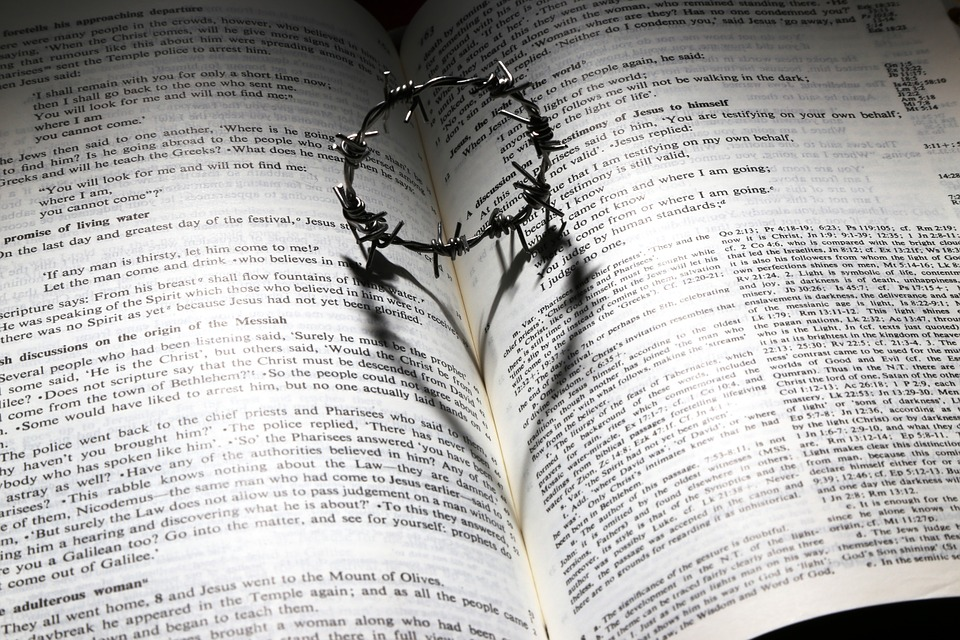 Promises of God in the bible